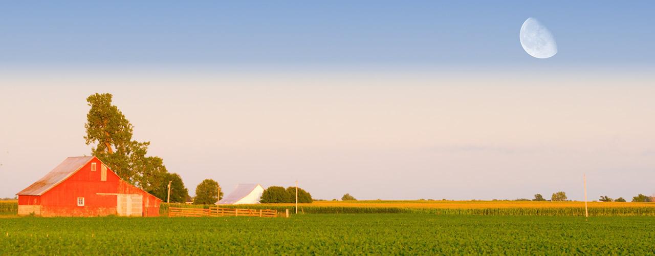 farm-02